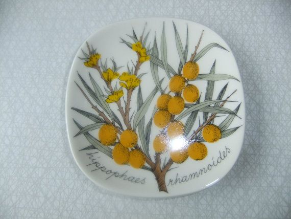 Sea Buckthorn by Arabia Finland Esteri Tomula design