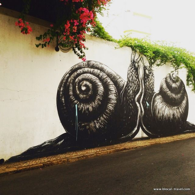 As seen on the streets of Lagos: a street art guide | Via Blocal Travel blog | 07.10.2015 -But if you are into street art, Lagos is the place to go! Especially if, after a graffiti hunt, you fancy a rest at one of the many beautiful beaches not so far from the city centre. Photo:ROA snails street art Lagos, Algarve #Portugal