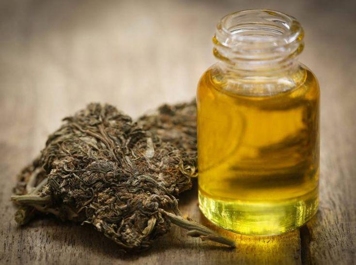 Kannabisz olaj: ezért nyomja el a gyógyszeripar, és nem beszélnek róla!