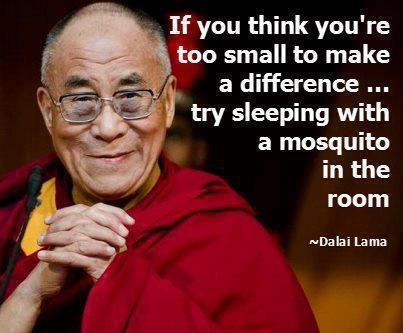 """""""If you think you're too small to make a difference, try sleeping with a mosquito in the room"""" - Dalai Lama"""