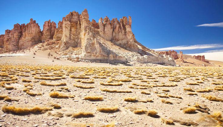 Chile: Confira Dicas e Atrações Imperdíveis | CVC Viagens