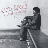 In the Jungle Groove [LP] - Vinyl