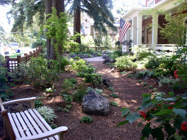 Lawn free idea for landscaping our front space pine for Tree landscaping ideas