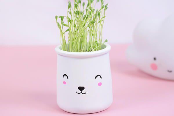 Recyclez vos pots à yaourt en terre cuite en adorables petits pots à germer façon Kawaii.