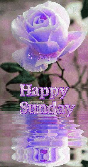 Happy Sunday | Good morning greetings, Happy sunday