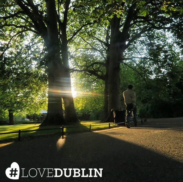 Good morning from Dublin! Let's start the day with the sun shining through the trees in St. Stephen's Green, captured by Picture This.   A cup of coffee, a morning run, a spot of sightseeing... How would you start your day in Dublin? #LoveDublin #love #Dublin #vsco #vscocam #travel  #photoftheday #pic #picoftheday #ff #tip  #photo #art #photography #artist #sun #health #inspo #Ireland