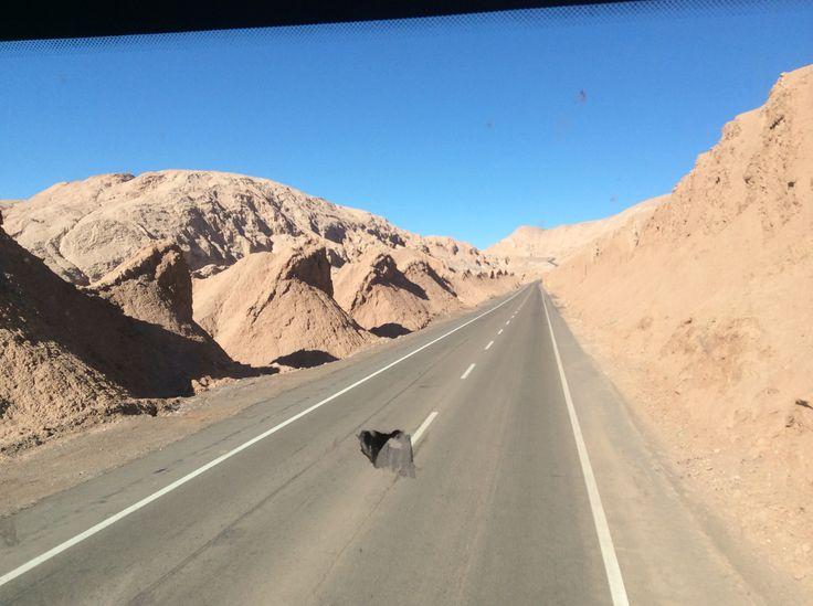 Da Atacama al Pacifico