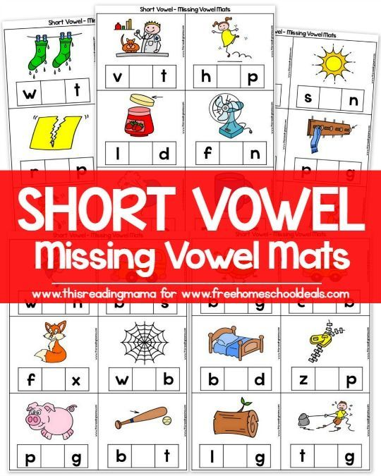 match the words with the same vowel sounds Is there a name for words with the same consonant sounds, but different vowel sounds for example: talk, take sit, site taught, tote bough, bow my son has been mixing.