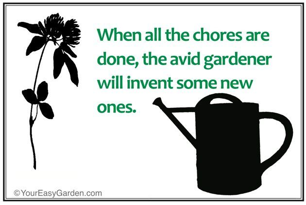 83 Best Images About Gardening Quotes On Pinterest