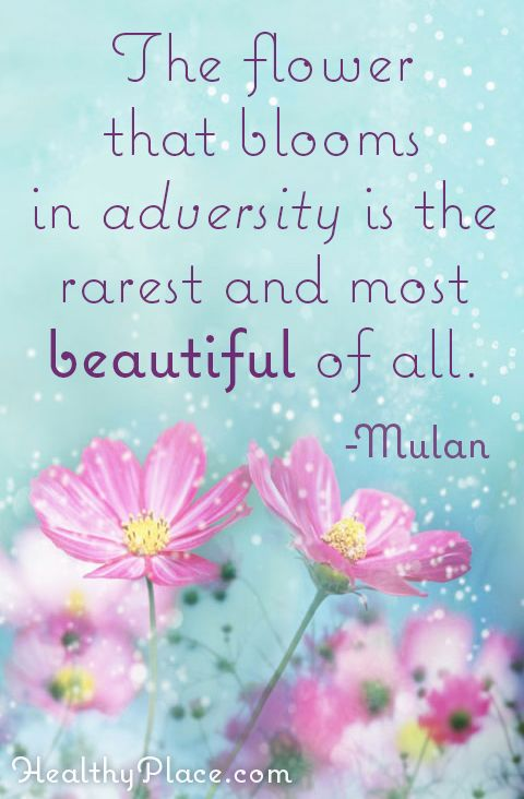positive quote the flower that blooms in adversity is the