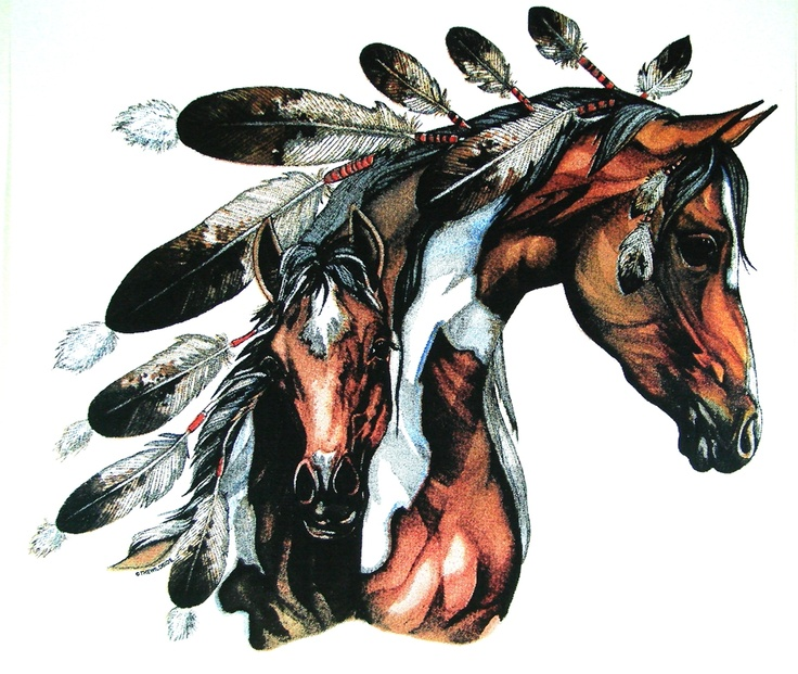 Native American War Horse T Shirt Mens and Womens T Shirt Free Shipping