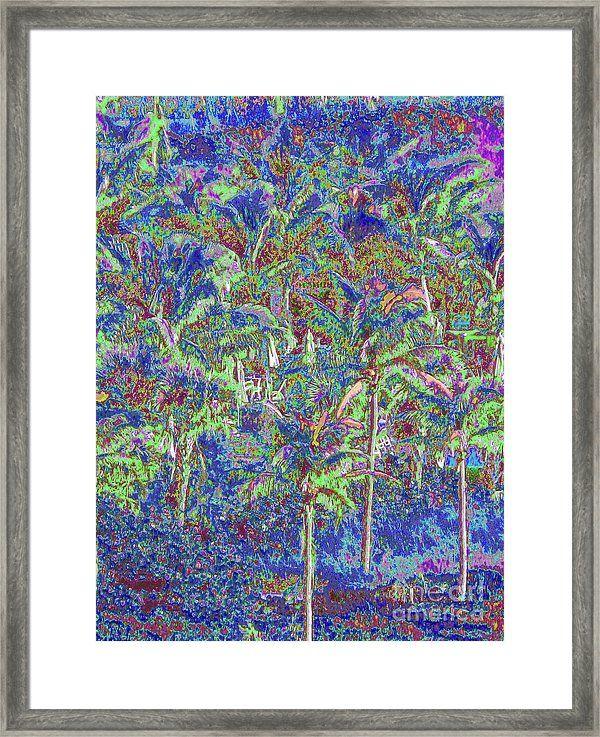 Palm 1010 Framed Print by Corinne Carroll