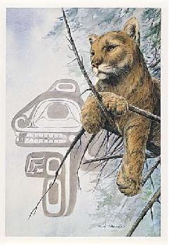 Sue Coleman Canadian Watercolour Artist Cougar AC312 (XAC31210)