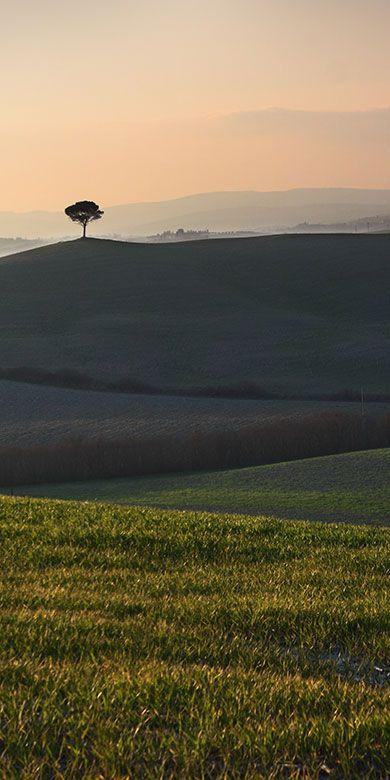 Photo gallery Toscana