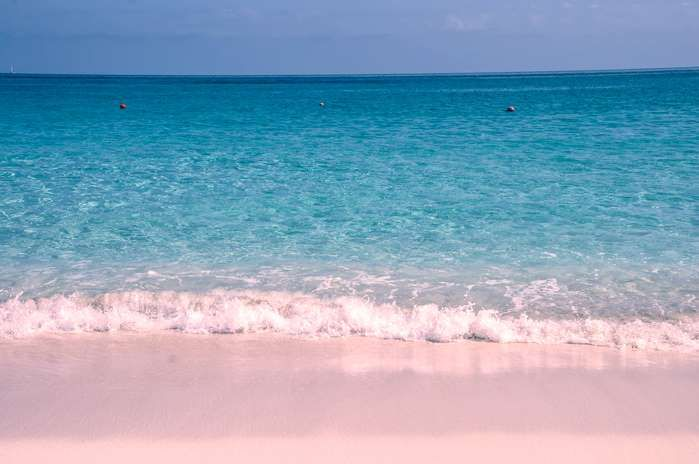 The island is famous for its stunning pink shores, but Pink Sands Beach is the best one. The color c... - Shutterstock
