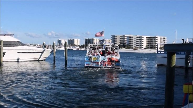 Pelicans Fly Towards The Sun - Dolphin Tours At Harbor in Destin FL - Ni...