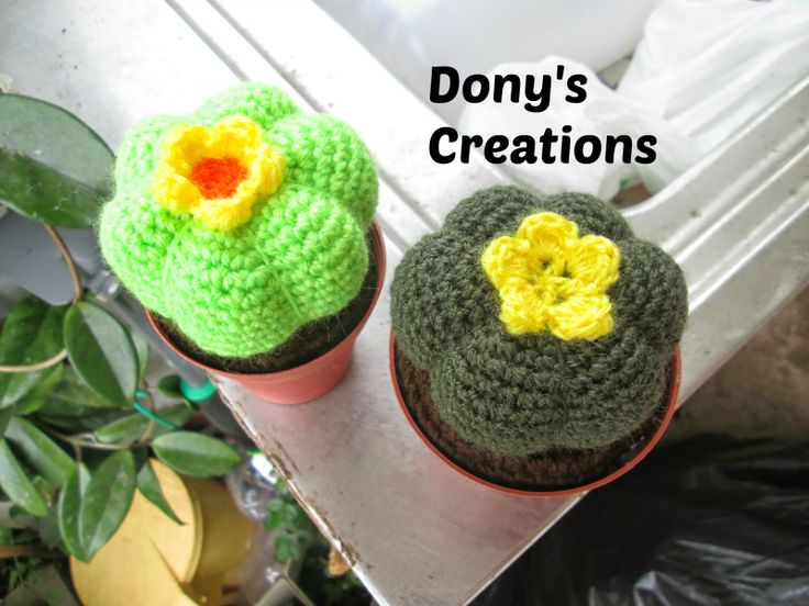 Dony's Creations : Cactus  zucca   _  pattern free italiano