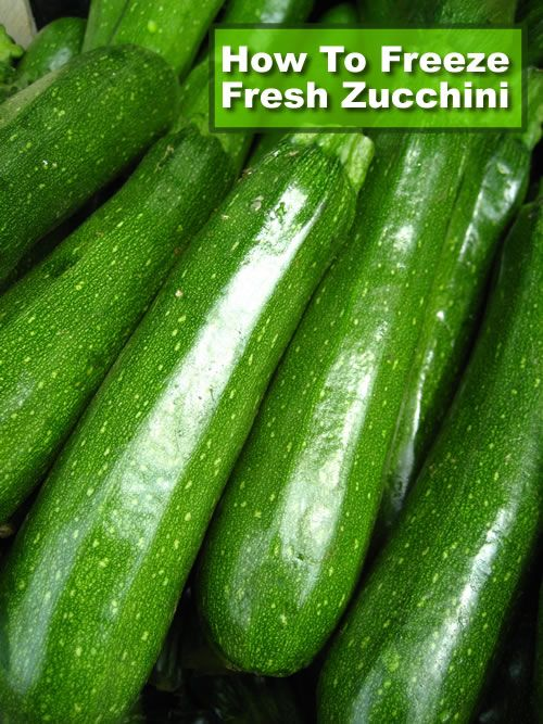 How To Freeze Zucchini - sliced or grated they will be ready for use whenever you need them... #freezing #homesteading