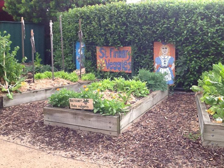St Finbars Catholic Primary School, Brighton East, VIC.  John Ashe Garden #enviroweek