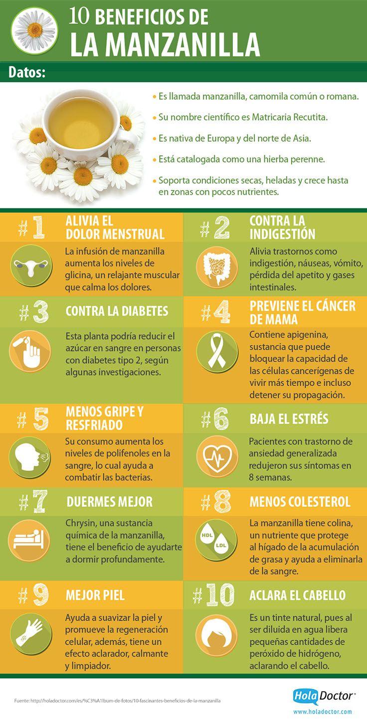 10 Beneficios de la manzanilla para nuestro cuerpo