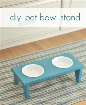 DIY Pet Bowl Stand...want to make one for just the water bowl:)