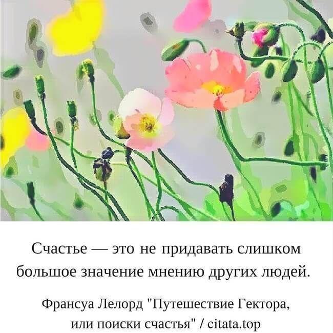 """Счастье  этонепридавать слишком большое значение мнению других людей. Франсуа Лелорд """"Путешествие Гектора или поиски счастья"""". #цитаты #афоризмы #лето #мнение #люди #счастье #человек #следуй #питер #москва #сад #лайки #цветы"""