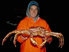 Red king crab - Wikipedia, the free encyclopedia