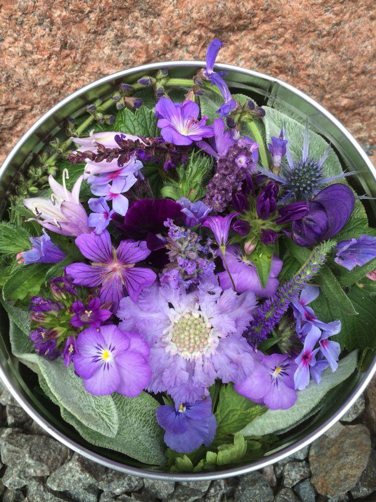 Blålila blommor i en gammal burk
