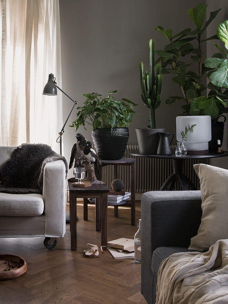 Rama in med gröna växter! SAKLIG fat, NORNäS bord, IKEA 365+ vin glas, KORKEN flaska, LUDDE