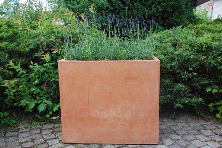 Dessa olika handgjorda terrakottaväggar och moduler i lokal Galestro lera är framtagna för att skapa spännande loungemiljöer. De fungerar mycket bra som avdelare tack vara sin form och stabilitet. Modulerna finns i flera olika former och storlekar varav några exempel visas - kontakta oss för offert.  Den stora cassettamodulen på bilden med lavendel har måtten H/LxB; 62/35x70 cm och vikt 55 kg, sittkuben bredvid lavendeln har måtten H/LxB 40/35x35 cm och vikt 22 kg.