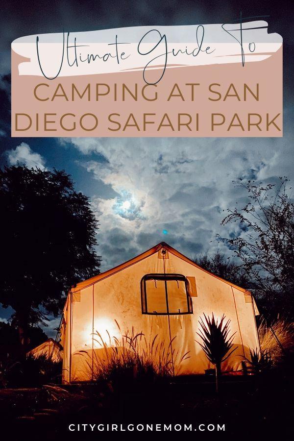 5 Reasons To Camp At San Diego Zoo Safari Park In 2020 San Diego Zoo Safari Park San Diego Safari Park Safari Park