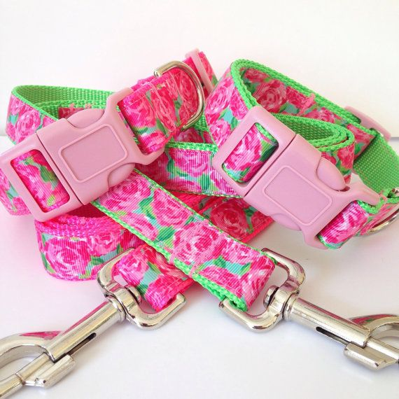 Coordinating Adjustable Leash and Collar Set  This listing is for one collar and one standard leash.  Collars measure one inch wide and can be