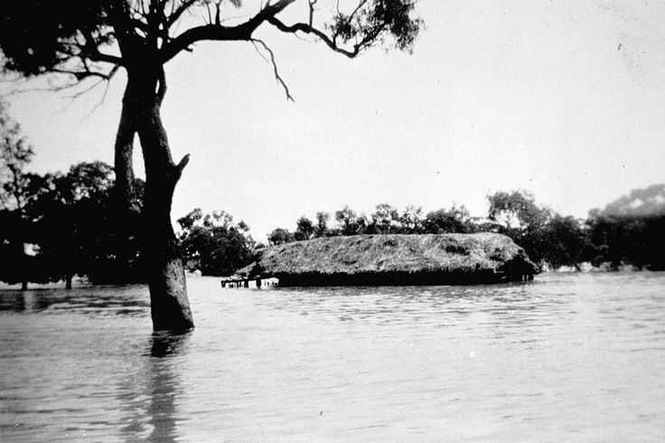 A drowned haystack in floodwaters nearLorquon, Victoria, circa 1930