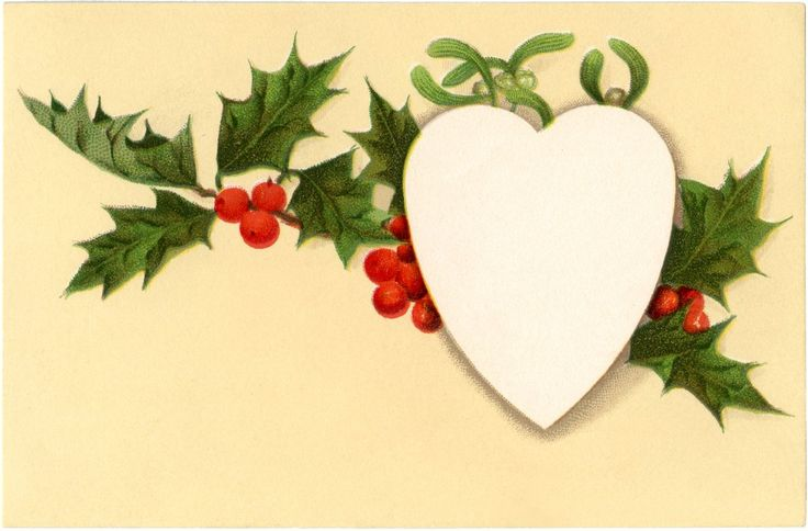 Vintage Holly Tag Image! | This is a scan of an Old Vintage card. The card shows a lovely Sprig of Holly and some Mistletoe too! In the center of the greenery is a blank white Heart. I think the Heart is perfect for writing a little message on it, it would make a sweet little Gift Tag for the Holidays!
