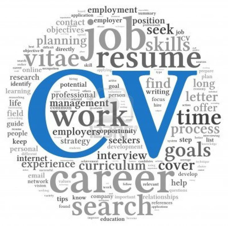 Academic Cvs  Curriculum Professional Cv Format And Career Advice