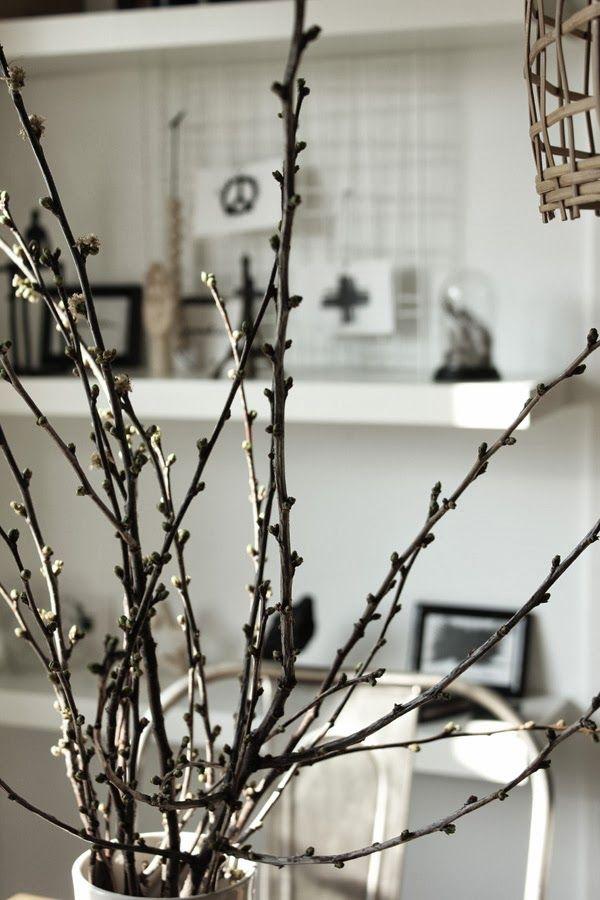 körsbär, grenar, vitt, bordsdekoration, inredning, inspiration, kök, matsal