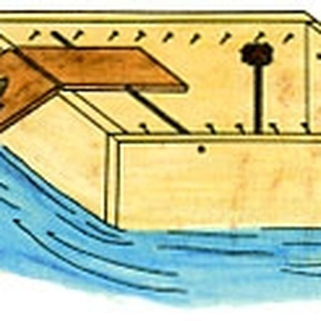 how to make a homemade lizard trap