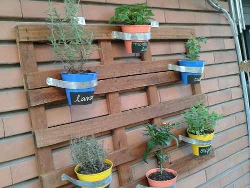 82 best plantas y jardines images on pinterest garden for Jardin vertical mercadolibre