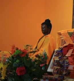 Living Dharma Volunteer Program - Take an opportunity to learn/study Buddha's teachings as you volunteer your time and energy.