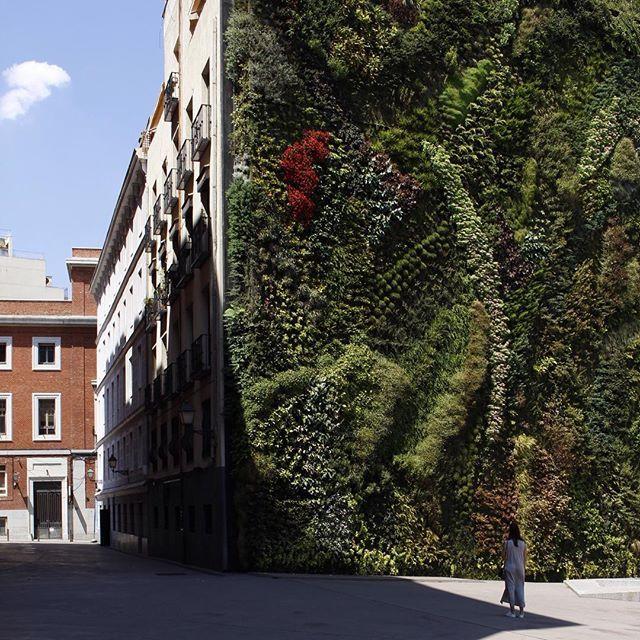 Street photography Madrid by @laciudadalinsta © Recorriendo Madrid con mi amiga Isa :)…