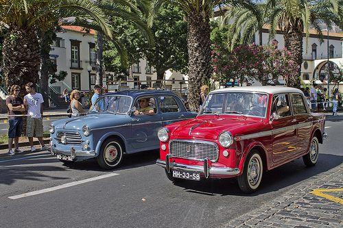 Fiat 1100/103 - Auto Parade  Funchal 2012