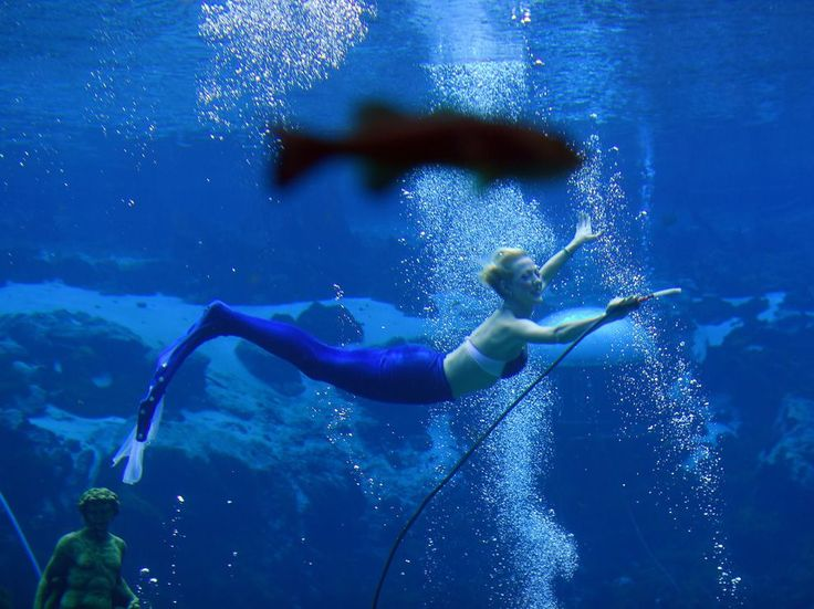 Picture of performer in Little Mermaid at Weeki Wachee Springs State Park in Hernando County, Florida