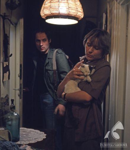 AKTORZY PROWINCJONALNI - dir. Agnieszka Holland (1978).    #cat