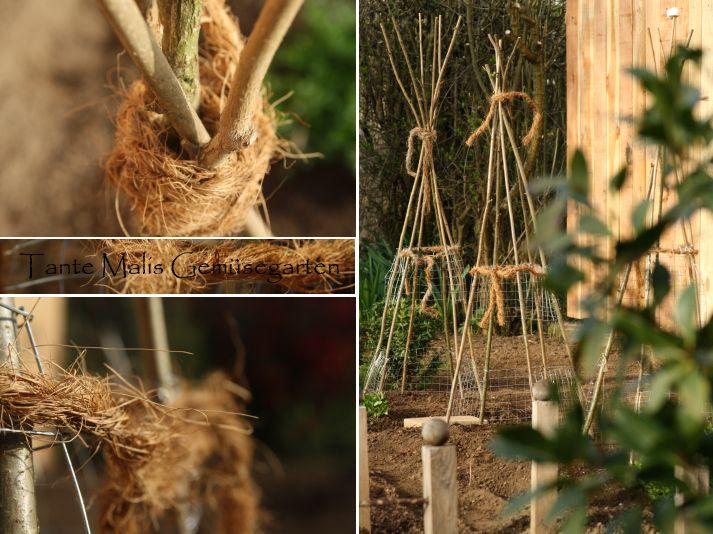 18 best Obelisk images on Pinterest Backyard ideas, Gardening and - gartenabgrenzung mit pflanzen