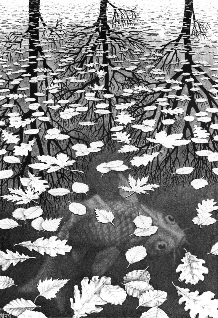 """Three Worlds"" by M.C. Escher, 1955"