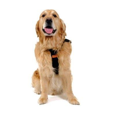 Cinto de Segurança 2x1 Gigante RAC. #cachorro #rac #passeiodecarro #filhote #caes #filhode4patas #amomeucachorro #cachorroehtudodebom #promocao #desconto
