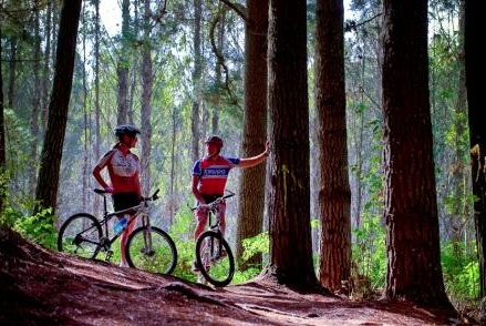 Free Walks and Cycle tracks to discover around Turangi, at the southern end of Lake Taupo