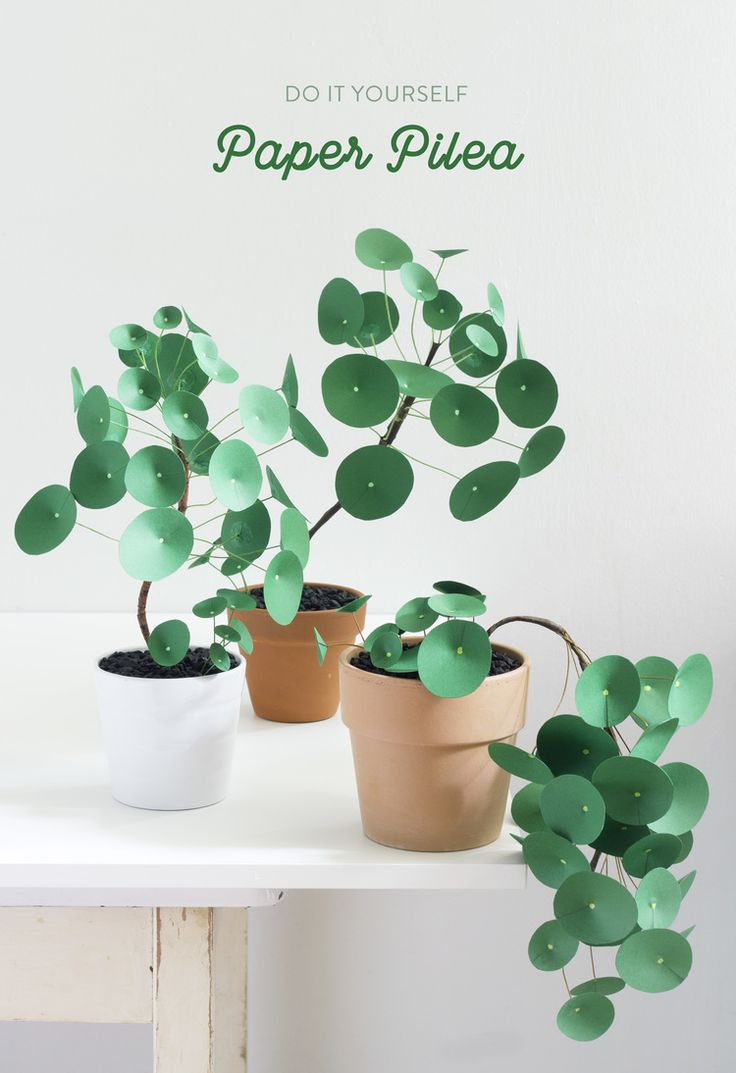 Paper Pilea 2.0 — The Apple of My DIY