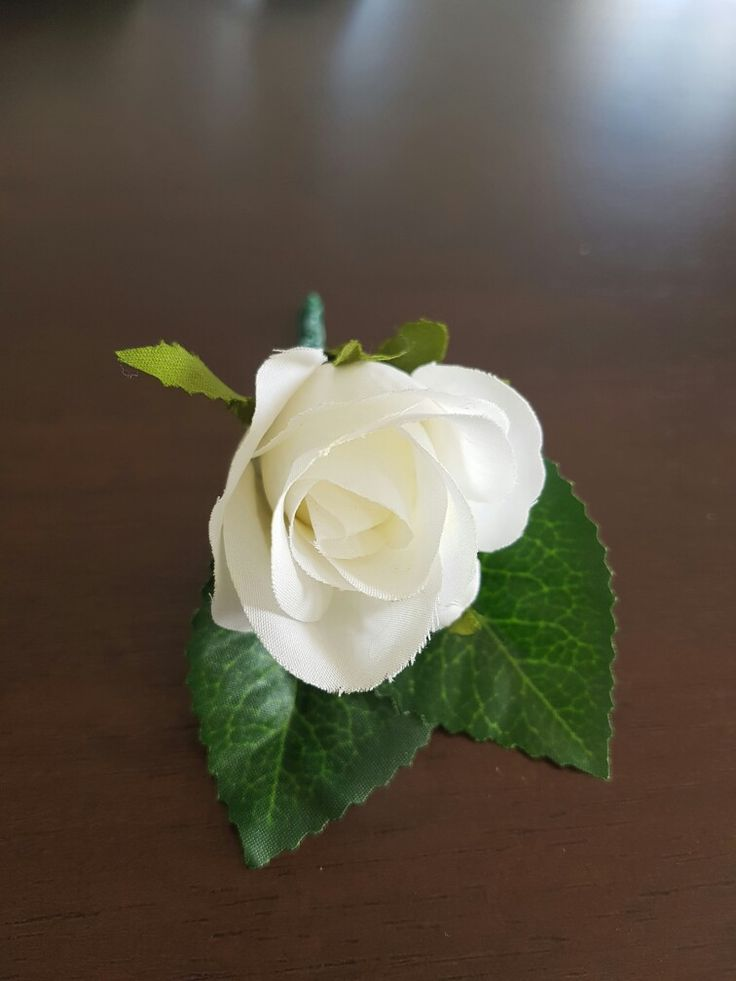 Simple white Rose buttonholes