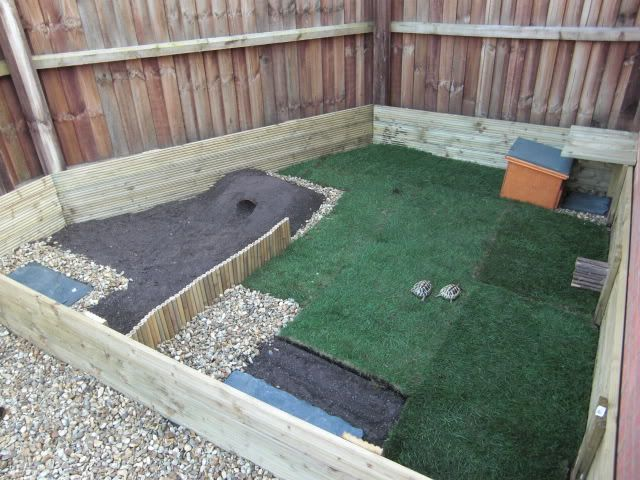 how to build a reptile enclosure free